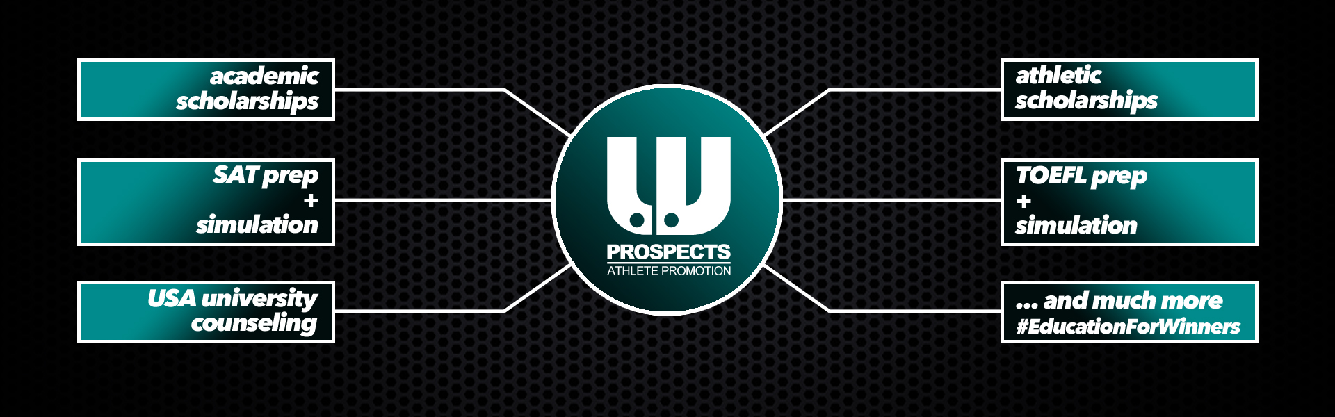 LV Prospects Website banner